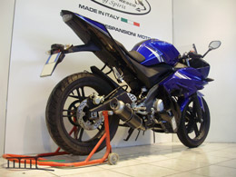 YZF R125 2015 Complete line Round short carbon